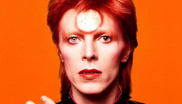 Steve Stachini Media David Bowie Documentaries